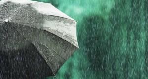 Под куполом зонта